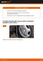 Tipps von Automechanikern zum Wechsel von MERCEDES-BENZ Mercedes W202 C 250 2.5 Turbo Diesel (202.128) Bremsscheiben