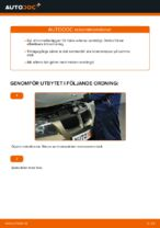 PDF Manual för reparation av reservdelar bil: BMW 5 Sedan (F10)