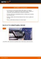 PDF manual pentru întreținere Clasa C