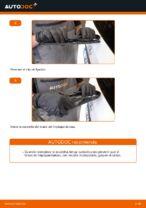 Limpieza de cristales manual de cambio y reparación con ilustraciones