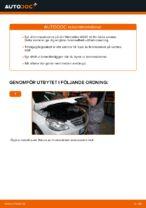 bak och fram Bromsskivor MERCEDES-BENZ C-klass   PDF instruktioner för utbyte