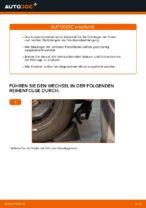 DIY-Leitfaden zum Wechsel von Federbeinlager beim BMW X5 (E53)