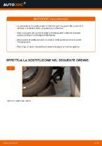 Le raccomandazioni dei meccanici delle auto sulla sostituzione di Braccio Oscillante BMW BMW E53 3.0 i