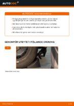 bak och fram Fjäderbenslagring och fjäderbenslager BMW 1-serie | PDF instruktioner för utbyte