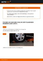 DIY-Leitfaden zum Wechsel von Bremsbelagsatz beim TOYOTA AYGO (WNB1_, KGB1_)