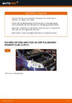 PEUGEOT Wartungsanweisung PDF