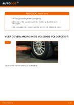 DIY-handleiding voor het vervangen van Spoorstangkogel in FORD FIESTA V (JH_, JD_)