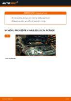 Kdy vyměnit Zapalovaci svicka FORD FIESTA V (JH_, JD_): příručka pdf