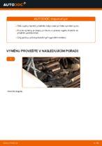Jak vyměnit a regulovat Tlumic perovani MERCEDES-BENZ VITO: průvodce pdf