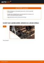 Käsiraamat PDF VITO hoolduse kohta