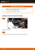 Instrukcijos PDF apie TRANSPORTER priežiūrą