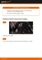 HONDA vartotojo instrukcija internetinės