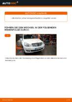 PDF Wechsel Anleitung: Rippenriemen MERCEDES-BENZ B-Klasse (W245)