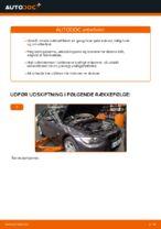 Hvordan man udskifter kabineluftfilter på BMW E92