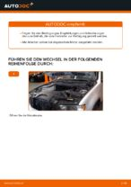 Wann Luftfiltereinsatz austauschen: PDF Anleitung für BMW X5 (E53)