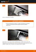 Hinweise des Automechanikers zum Wechseln von CITROËN CITROËN C1 (PM_, PN_) 1.4 HDi Federn