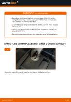 Remplacement de Butée de suspension sur LEXUS RX (MHU3_, GSU3_, MCU3_) : trucs et astuces