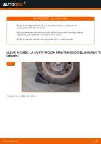 Cambiar Amortiguadores CITROËN C3: manual de taller