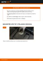 PDF guide för byta: Bromsskivor LEXUS bak och fram