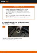 Bremsbacken wechseln LEXUS RX: Werkstatthandbuch
