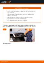 Hvordan man udskifter kabineluftfilter på AUDI A4 B6