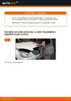 Tipps von Automechanikern zum Wechsel von MERCEDES-BENZ Mercedes W245 B 200 CDI 2.0 (245.208) Heckklappendämpfer