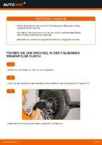 Wie Sie die hinteren Fahrwerksfedern am Opel Corsa C ersetzen