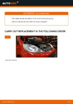 Auto mechanic's recommendations on replacing PEUGEOT PEUGEOT 107 1.4 HDi Wiper Blades