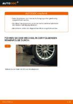 Wie Sie die hinteren Fahrwerksfedern am Ford Fiesta V JH JD ersetzen