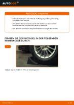 Wie Sie die hintere Aufhängung der Stoßdämpfer am Ford Fiesta V JH JD ersetzen