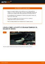 Cambio Correa Poly V FORD FIESTA V (JH_, JD_): guía pdf