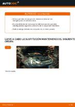 PDF manual sobre mantenimiento FIESTA