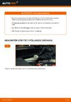 PDF guide för byta: Bromsskivor FORD bak och fram