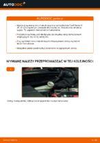 tylne i przednie Tarcza hamulcowa FORD Fiesta Mk6 Hatchback (JH1, JD1, JH3, JD3) | PDF poradnik wymiany
