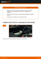 Manuálna PDF na údržbu FIESTA