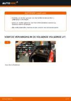 Hoe u gasveren voor het kofferbakdeksel van een Ford Fiesta V JH JD kunt vervangen