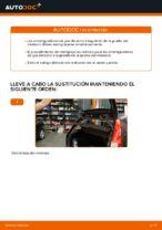 Cómo sustituir los amortiguadores de gas de la puerta del maletero en Ford Fiesta V JH JD