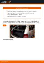 Kuidas vahetada ja reguleerida Tagaluugi amort: tasuta pdf juhend