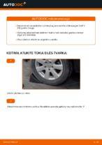 Kaip pakeisti galinio rato stebulės guolį Volkswagen Golf V (1K)