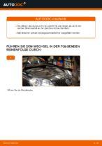 Wie Sie einen hinteren Bremssattel am Volkswagen Golf V (1K) ersetzen