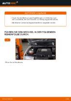 Tipps von Automechanikern zum Wechsel von SKODA Skoda Fabia 6y5 1.9 TDI Bremsscheiben