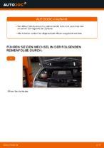 VEMO V24-70-0019 für Fabia I Combi (6Y5) | PDF Handbuch zum Wechsel