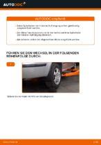 Wie Sie die hinteren Fahrwerksfedern am Skoda Fabia 6Y5 ersetzen