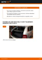 Wie der Austausch von Gasfedern des Kofferraumdeckels bei Skoda Fabia 6Y5-Autos funktioniert