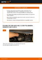 Scheibenbremsen gelocht wechseln: Online-Anweisung für OPEL ZAFIRA