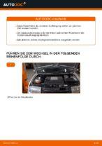 Wie Federbein SKODA FABIA auswechseln und einstellen: PDF-Anleitung