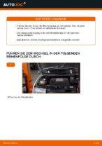 DIY-Anleitung zum Wechsel von Bremsbelagsatz Ihres SKODA FABIA Combi (6Y5)