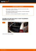 Reparatur- und Servicehandbuch für Skoda Fabia 3