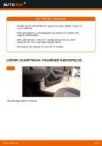 Automekaniker anbefalinger for udskiftning af SKODA Skoda Fabia 6y5 1.9 TDI Luftfilter