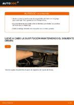 Cómo sustituir las pastillas de freno de discos trasero en Opel Zafira F75